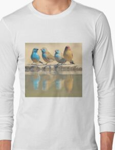 Exotic Colorful Wild Birds from Africa - Blue and Violet-eared Waxbill - Colors in Nature Long Sleeve T-Shirt