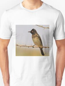 Red-eyed Bulbul - Exotic Colorful Wild Birds from Africa Unisex T-Shirt