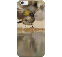 Colors in Nature - Colorful Wild Birds from Africa - Reflections of Life iPhone Case/Skin