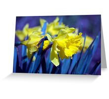 Spring Flower Series 17 Greeting Card