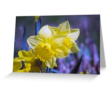 Spring Flower Series 18 Greeting Card