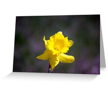 Spring Flower Series 19 Greeting Card