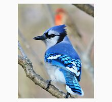 Blue Jay - Exotic Colorful Wild Birds - Natural Beauty Unisex T-Shirt