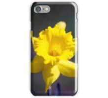 Spring Flower Series 20 iPhone Case/Skin