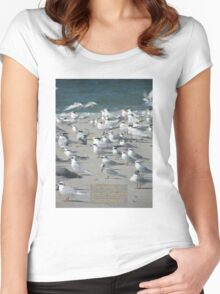 Family of Seagulls Women's Fitted Scoop T-Shirt