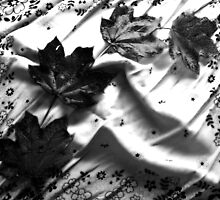 Newly Fallen Leaves -Black and White by Shawna Rowe