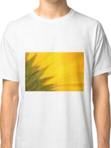 Juicy Fruit Classic T-Shirt