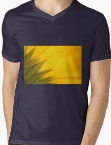 Juicy Fruit Mens V-Neck T-Shirt