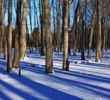 Blue Winter Day Sticker