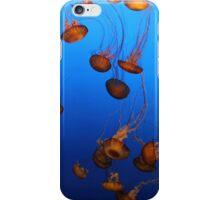 Sea Nettle // Monterey Bay Aquarium iPhone Case/Skin