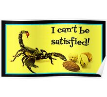 I Can't Be Satisfied! Poster