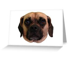 zoe the puggle Greeting Card