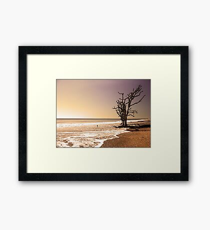 For Just One Day Framed Print
