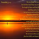 Proverbs 3:1-7 - Wisdom for a Son by JLOPhotography