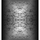 Yeah another Fractal by scholara
