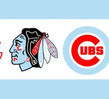 Chicago Team Flag  Sticker