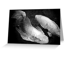 A Pair of Koi In Black and White Greeting Card