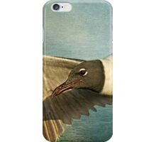 Seagull - Laughing Gull iPhone Case/Skin