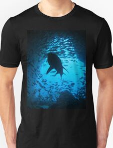 Grey Nurse Shark, South West Rocks, Australia T-Shirt