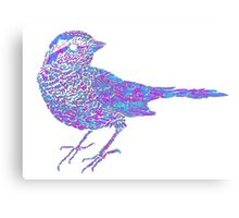 Pink and blue sparrow Canvas Print