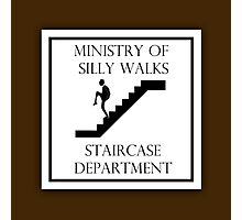 Silly Staircase Photographic Print