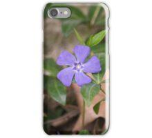 Spring Flower Series 28 iPhone Case/Skin