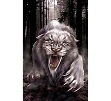 Fierce Albino Ice Age Smilodon (Sabre Tooth Tiger) Photographic Print