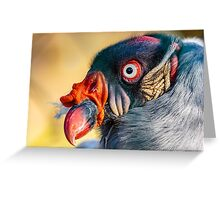 Magnificent head of a King Vulture up close and personal Greeting Card