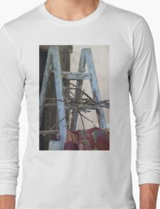 old scale Long Sleeve T-Shirt