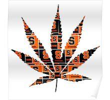 Syracuse Weed Leaf Poster