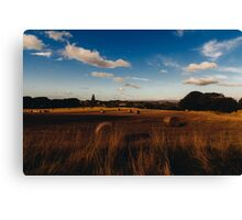 Roll Canvas Print