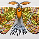 circus moth by federico cortese