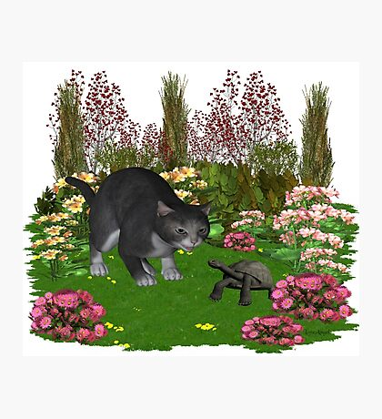 Trouble in the garden .. July Cat Photographic Print
