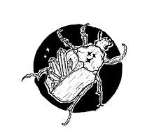 Stellar Crystal Beetle Ink Illustration Photographic Print