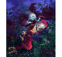 Red and blue elves meet who born with wings Photographic Print