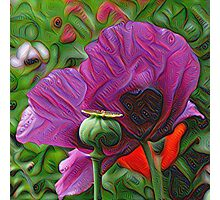 DeepDream Flowers, Poppies Photographic Print
