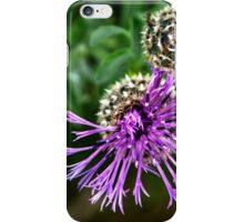Looking Down on Thistle Flower iPhone Case/Skin