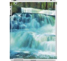 Beautiful Poconos of Pennsylvania Painting iPad Case/Skin