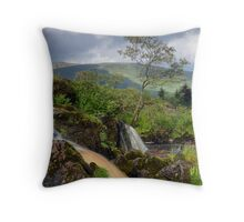 The Loup Of Fintry Throw Pillow