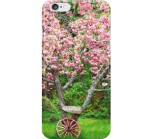Cherry Blossoms and Wagon Wheel iPhone Case/Skin