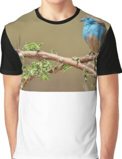 Blue Waxbill - Colorful Wild Birds from Africa - Beautiful Bliss Graphic T-Shirt