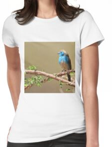 Blue Waxbill - Colorful Wild Birds from Africa - Beautiful Bliss Womens Fitted T-Shirt