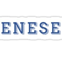 Geneseo - DECORATIVE  Sticker