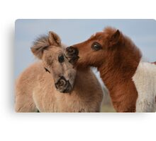 Kiss and Tell Canvas Print