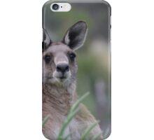 Peekaboo Kangaroo iPhone Case/Skin