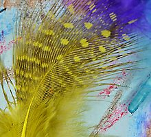 Abstract  Feather  by relayer51
