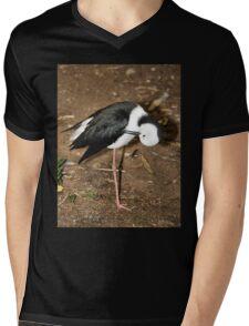 Pied Stilt Preening Mens V-Neck T-Shirt