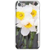 Spring Flower Series 37 iPhone Case/Skin