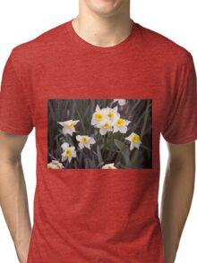 Spring Flower Series 38 Tri-blend T-Shirt