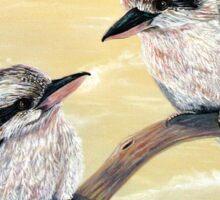 Kookaburra Magic Sticker